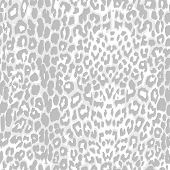 stock photo of leopard  - leopard print pattern gray scale vector - JPG