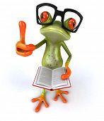 pic of amazonian frog  - Fun frog - JPG