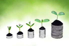 image of sustainable development  - trees growing on coins  - JPG