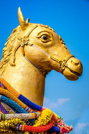 picture of kama  - A golden horse statue in Wat Kuan Kama - JPG
