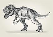 image of tyrannosaurus  - Sketch style illustration of a tyrannosaurus rex - JPG