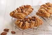 stock photo of maple syrup  - Danish pastry maple pecan with nuts and maple syrup - JPG