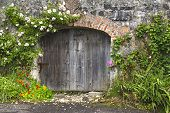 stock photo of climbing roses  - Charming rose covered grey stone and brick wall and stable doors in Northern Irish village - JPG
