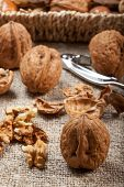 picture of nutcracker  - Set of nuts with a nutcracker - JPG
