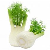 stock photo of food crops  - Fresh two fennel isolated on a white background - JPG