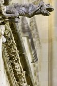 foto of gargoyles  - Foreground of a gargoyle in Cuenca Cathedral - JPG
