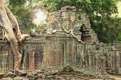stock photo of mystique  - Ruins of ancient temple with a tree growing straight from the top of construction - JPG