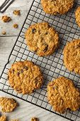 stock photo of baked raisin cookies  - Homemade Oatmeal Raisin Cookies Ready to Eat - JPG