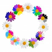 foto of transgendered  - chamomile wreath concept with gay culture symbols LGBT signs is isolated on white background closeup - JPG