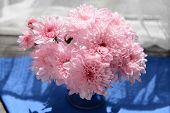 image of chrysanthemum  - Beautiful chrysanthemums in vase on fabric background - JPG