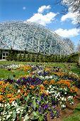 foto of geodesic  - Saint Louis Botanical Garden with geodesic dome - JPG