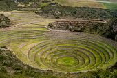 Agricultural Terracing Of Moray, Sacred Valley, Peru poster