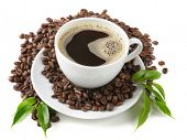 picture of cup coffee  - coffee in the cup on the white background - JPG