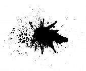 Abstract Splatter Black Color Background. Paint Dripping Vector Illustration. Grunge Texture. poster