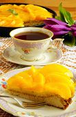 picture of saucer magnolia  - Peach tart - JPG