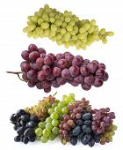 Pink, Blue And Green Grapes Isolated On White Background. Top View. Bunch Of Pink, Blue And Green Gr poster