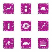 Zoological Garden Icons Set. Grunge Set Of 9 Zoological Garden Icons For Web Isolated On White Backg poster