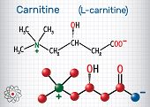 Carnitine (l-carnitine) Molecule. Structural Chemical Formula And Molecule Model. Sheet Of Paper In  poster