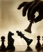 picture of cunning  - Playing chess game - JPG