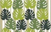 Monstera Deliciosa Floral Background Vector