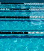 picture of swim meet  - Pool lane ropes in outdoor swimming pool - JPG