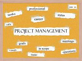 picture of status  - Project Managment Corkboard Word Concept with great terms such as professional career status scope and more - JPG