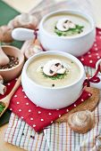 stock photo of champignons  - Creamy mushroom soup with fresh champignons and chives