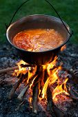picture of wrangler  - Cooking traditional hungarian potato stewed with paprika and onions in a cauldron stew - JPG