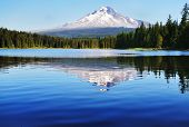 stock photo of hoods  - The Mount Hood reflection in Trillium Lake - JPG