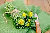 Rhodiola Rosea On The Board With A Knife