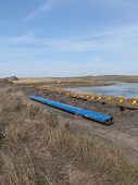 foto of wetland  - A new gas pipeline being constructed next to a wetland - JPG