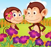 foto of hilltop  - Illustration of the two monkeys at the garden in the hilltop - JPG