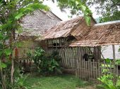 picture of longhouse  - A traditional Malaysian longhouse building in the country of Sabah - JPG