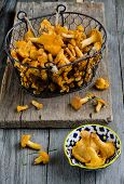 stock photo of chanterelle mushroom  - Forest chanterelle mushrooms in a iron basket