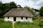 image of farmworker  - White traditional Ukrainian rural wooden house with hay roof Luga village - JPG
