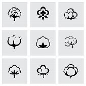 foto of boll  - Vector cotton icon set on grey background - JPG
