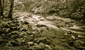 image of gatlinburg  - Horizontal black and white Blue Ridge Mountain forest scene with a stream rushing by - JPG