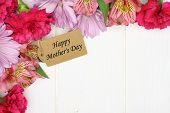 stock photo of carnation  - Happy Mother - JPG