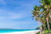 picture of boracay  - Tropical beach view and palm trees against background of turquoise sea and blue sky at exotic white sandy Puka beach on Boracay island Philippines - JPG