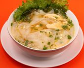 pic of glass noodles  - Glass noodle soup with chicken and beansprouts on an orange background - JPG