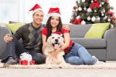 picture of dog christmas  - Young couple celebrating Christmas together with their dog seated by the sofa at home - JPG
