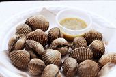 picture of edible  - Closeup Fresh Blood Cockles market edible background - JPG