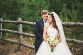 pic of bridal veil  - Groom suit and bride in wedding white dress on nature - JPG