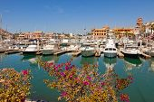 stock photo of cortez  - Marina and Shopping District in Cabo San Lucas Mexico - JPG