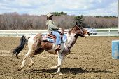 picture of barrel racing  - A young teenage girl approaches a barrel before racing to the finish line - JPG