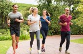 Healthy group of people jogging on track in park. Happy couple enjoying friend time at jogging park  poster