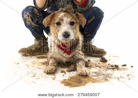Funny Dirty Dog And Child