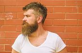 Stylish Bearded Hipster. Beard Grooming Has Never Been So Easy. Beard Care Tricks Will Keep Your Fac poster