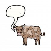picture of moo-cow  - mooing cow cartoon - JPG
