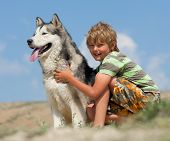 stock photo of laika  - Boy hugging a fluffy dog - JPG